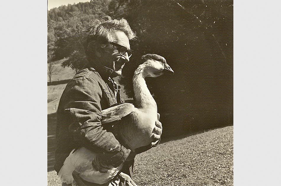 Paul Galdone making friends with a neighbor's goose, Tunbridge, VT