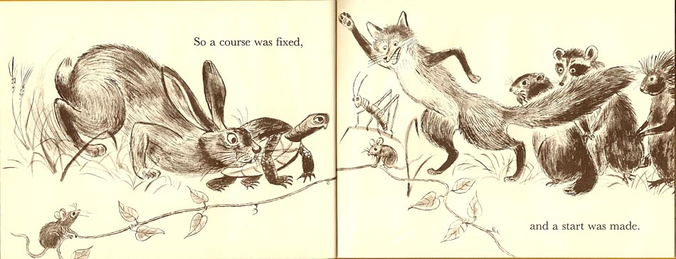 The Hare and the Tortoise by Paul Galdone